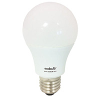 Edison Screw LED Bulb